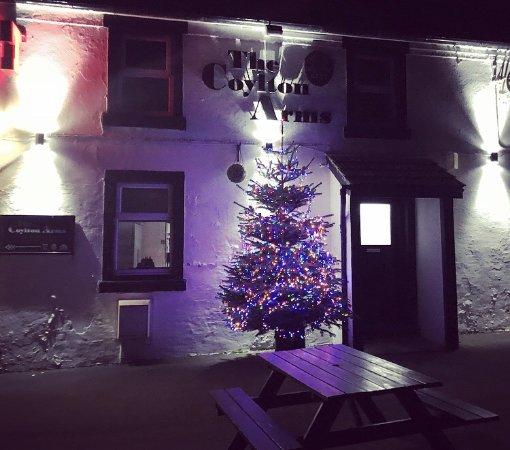 Coylton, UK: Outside tree