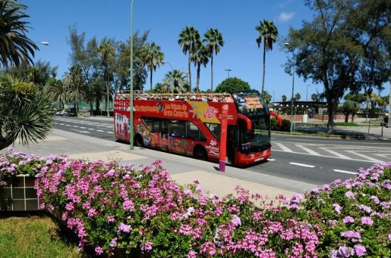 City Sightseeing Las Palmas de Gran...