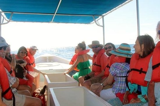 Tour di Los Cabos Day: City