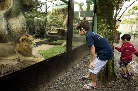 Full-Day Family Fun Private Customized Tour door Rio de Janeiro: Private kids and family fun in Rio