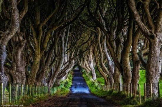 Game of Thrones Tour of Ireland's Causeway Coast