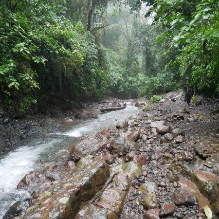 Parrita, Costa Rica: photo5.jpg