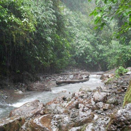 Parrita, Costa Rica: photo7.jpg