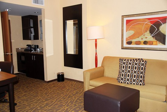 Embassy Suites by Hilton Houston - Energy Corridor: One Queen room Suite
