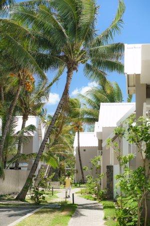 Pool - Picture of Tropical Attitude, Mauritius - Tripadvisor