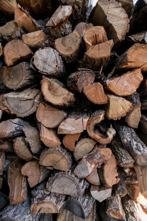 Avon, CO: we use fruit wood from Palisade Colorado for our wood fired grill and smoker