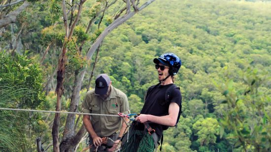 Beechmont, Australië: There's lots of activities available at Binna Burra.