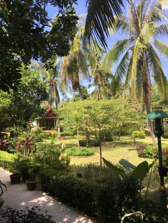 Rasa Sayang Resort Picture