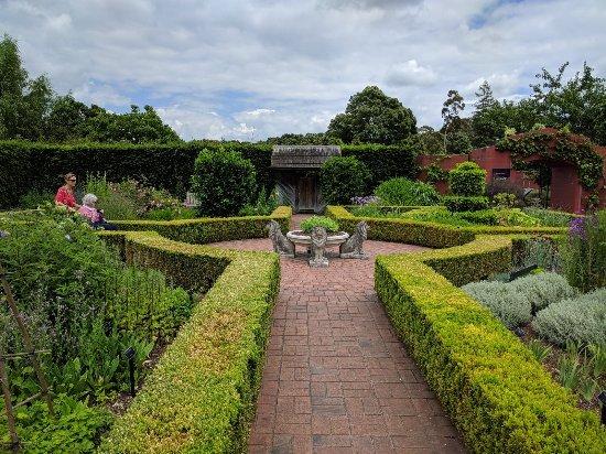 Hamilton Gardens: IMG_20171201_124225_large.jpg