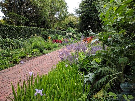 Hamilton Gardens: IMG_20171201_125946_large.jpg