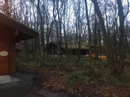 Otley, UK: Cabin in the woods, listen for the banjos!!!!!!!
