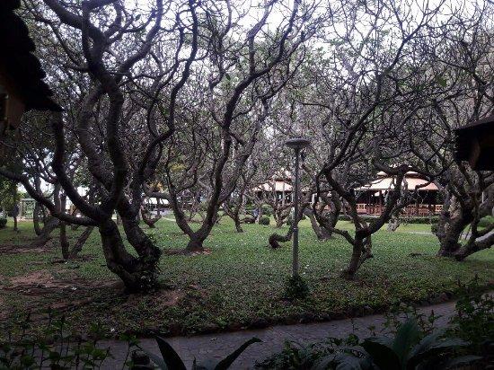 Imperial Pattaya Hotel 이미지