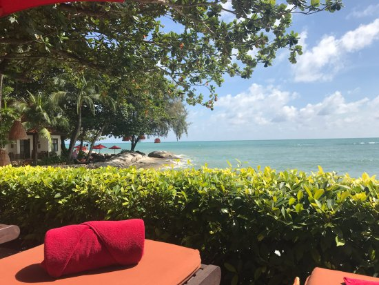 Rocky s Boutique Resort  193    3 0 4     UPDATED 2017 Prices   Reviews    Ko Samui Lamai Beach   TripAdvisor. Rocky s Boutique Resort  193    3 0 4     UPDATED 2017 Prices