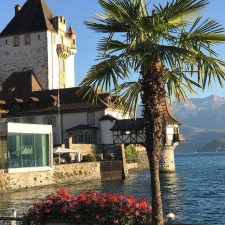 Thun, Suisse : photo6.jpg
