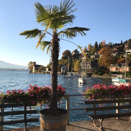 Thun, Suisse : photo7.jpg