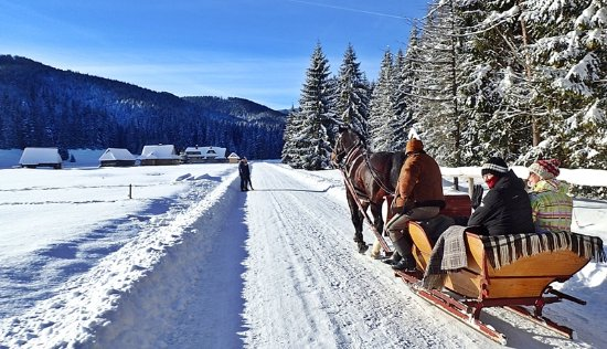 ‪Sleigh Ride in the Tatra National Park‬