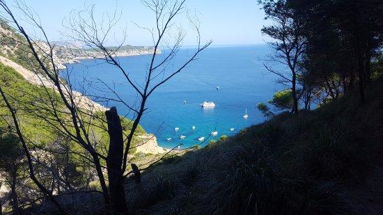 Playa Coll Baix: Вид на пляж с начала лесной тропы