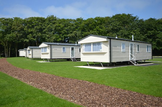 Hemsby, UK: Our new-in-2017 Silver Plus 2 caravans, with pet friendly options available!