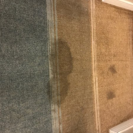 GALLERYone - A DoubleTree Suites by Hilton Hotel : Time to Refurbish or Clean Carpets