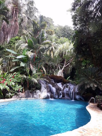 Ylang Ylang Beach Resort: Spring-fed pool
