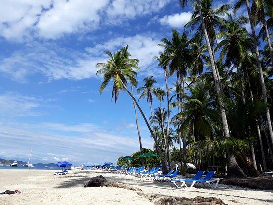 Ylang Ylang Beach Resort: Tortuga island snorkelling trip