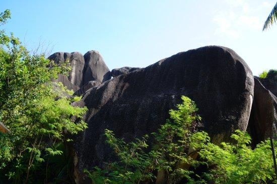 Νήσος Μάχε, Σεϋχέλλες: 1 Moyenne Island