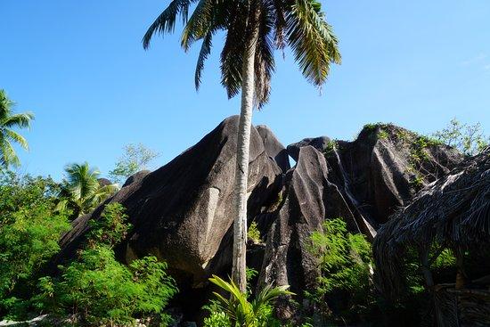 Νήσος Μάχε, Σεϋχέλλες: 2 Moyenne Island