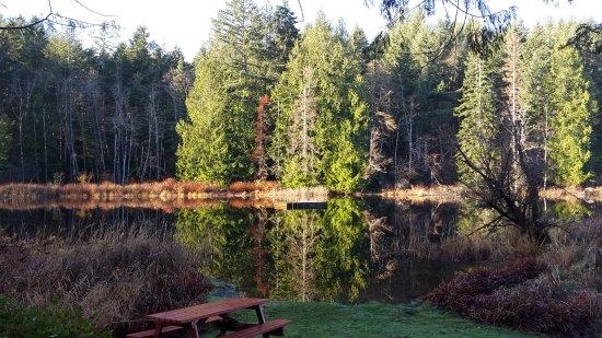Cusheon Lake Resort Photo