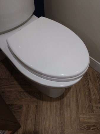 Jensen Beach, FL: Cheap toilet seats already falling off.