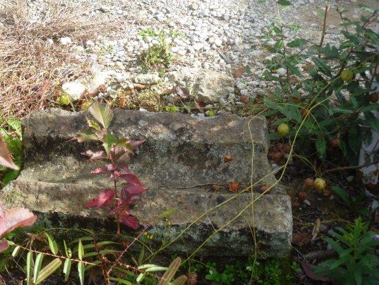 Abandoned Hirano Temple Ruins