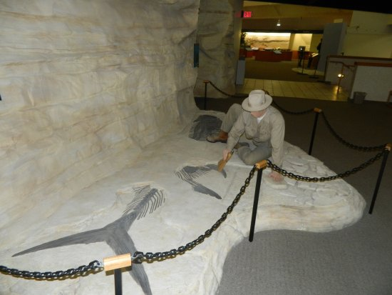 Hays, KS: diorama of Sternberg with fish fossil