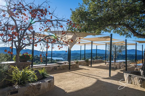 Squire Livery Tours: View from Amizetta Family Estate Wines