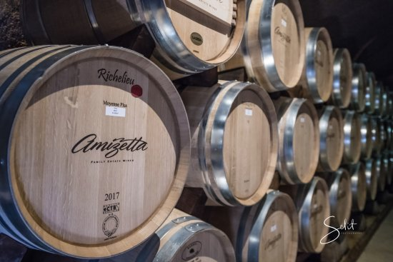 Squire Livery Tours: Inside the caves of Amizetta Family Estate Wines