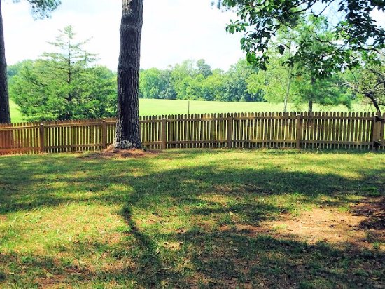 Wake Forest, North Carolina: view of pasture from farmhouse