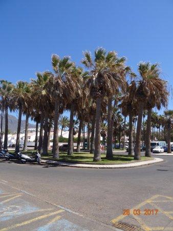 Paseo Marítimo, Puerto de Los Cristianos: Marine Walks, март 2017 года...