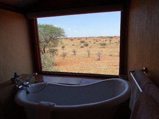 Bagatelle Kalahari Game Ranch: DSC01003_large.jpg