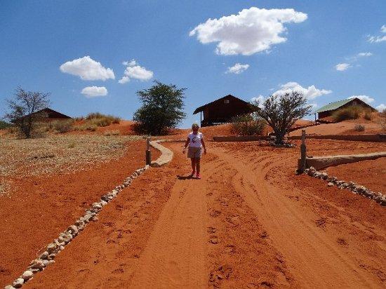 Bagatelle Kalahari Game Ranch: DSC01007_large.jpg