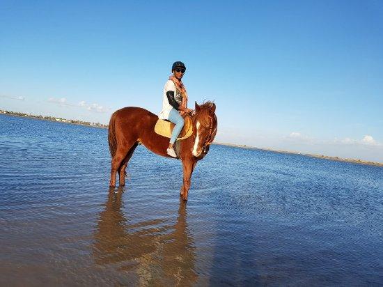 ميدون, تونس: 20171202_160433_large.jpg