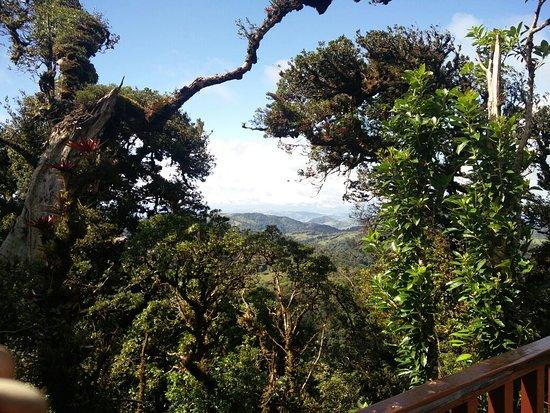 Santa Elena, Costa Rica: IMG_20171202_132602_large.jpg