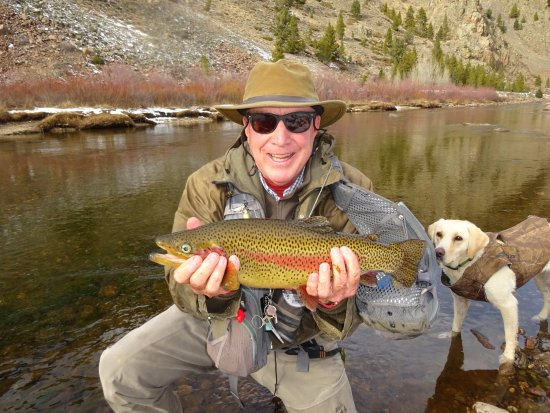 Almont, CO: Taylor River Fishing