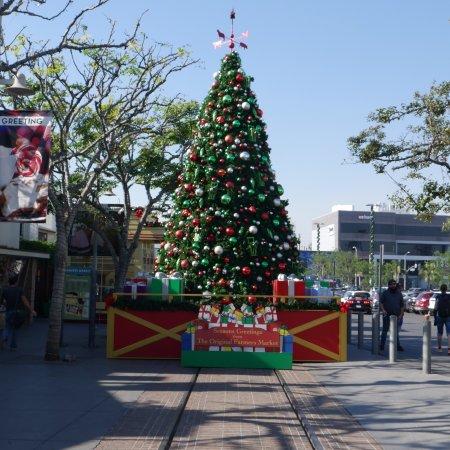Los Angeles Sightseeing Tours Tripadvisor