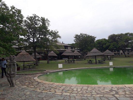 Hwange National Park Photo