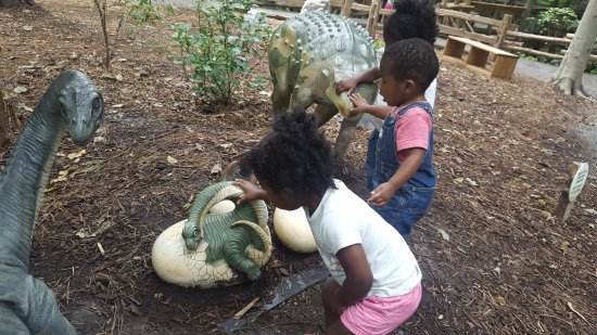 Newport News, VA: Dino exhibit encourages the kids to touch, but not climb