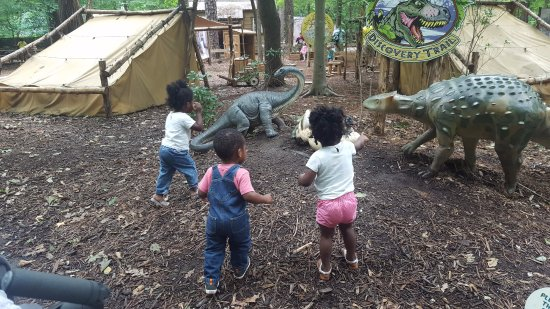 """Newport News, VA: Discovery encampment with the tools to """"dig"""" fossils"""