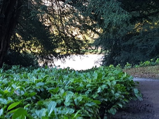 Fountains Abbey and Studley Royal Water Garden: 20171207_135618_large.jpg