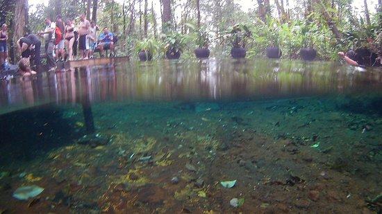 Ринкон-де-ла-Вьеха, Коста-Рика: cristal waters