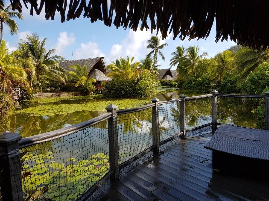 Maitai Lapita Village Huahine : 20171116_073941_large.jpg
