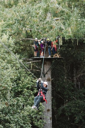 Occidental, CA: The perfect adventure for groups!