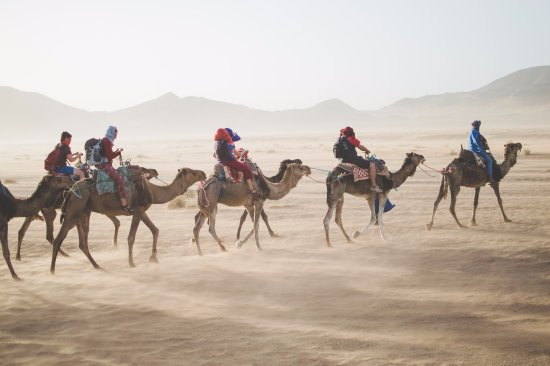 5e048c4d6d4 Trekking with Camel in Sahara Like Nomadic People - Picture of ...