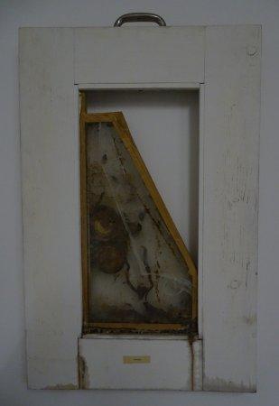Neues Museum Weserburg Bremen: Dieter Roth - Gitarre, frame, culrue of fungus, photo by Meurtant
